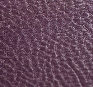 Amadeus Dark Purple