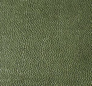 Zagrino Green Black