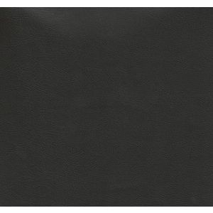 Freeway Sierra Black Auto Vinyl