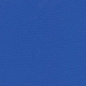 BELUGA TRUE BLUE